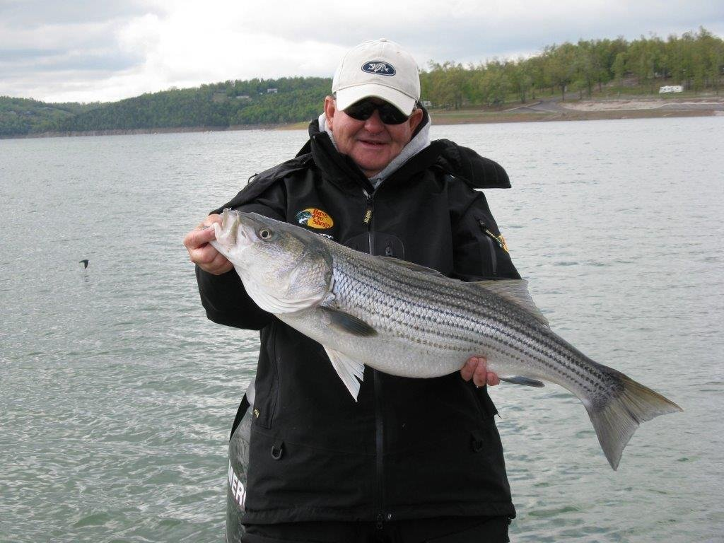 Arkansas fishing report from anglers april june 2013 for Lake norfork fishing report