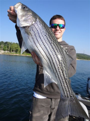Arkansas fishing report from anglers july september 2013 for Ar fishing report