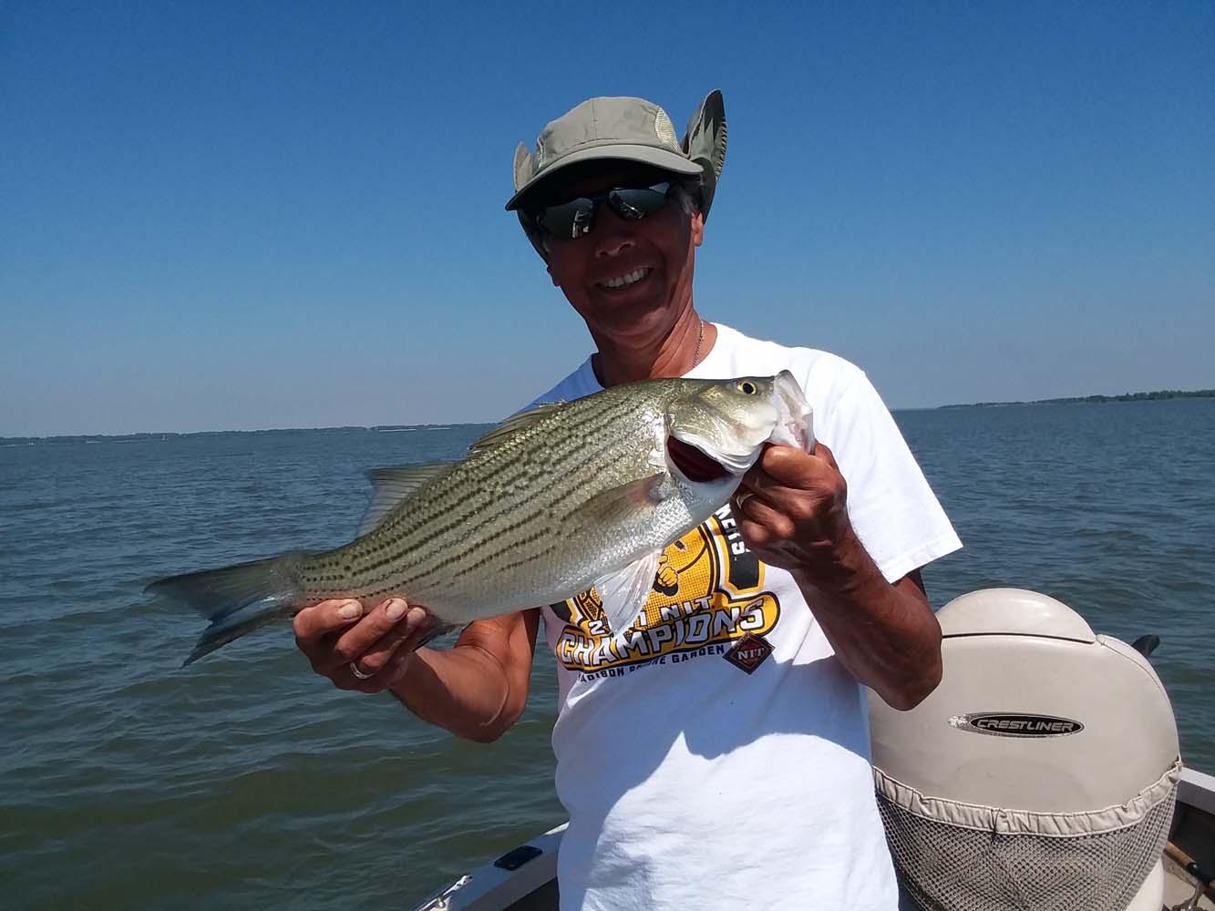 Kansas fishing report reports from anglers for Glen elder fishing report