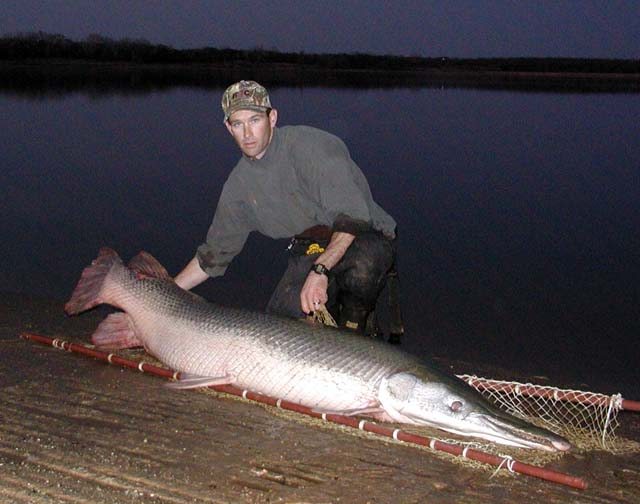 New oklahoma state record alligator gar caught in red river for Kansas fish records