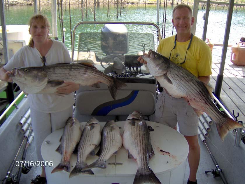 Arkansas fishing report from anglers jan june 2006 for Beaver lake arkansas fishing report