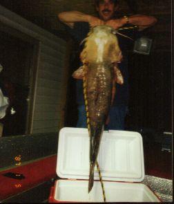 Kansas Fish